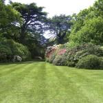 Soluzioni scenografiche e paesaggistiche per giardini e verde - Fratelli Bonoldi