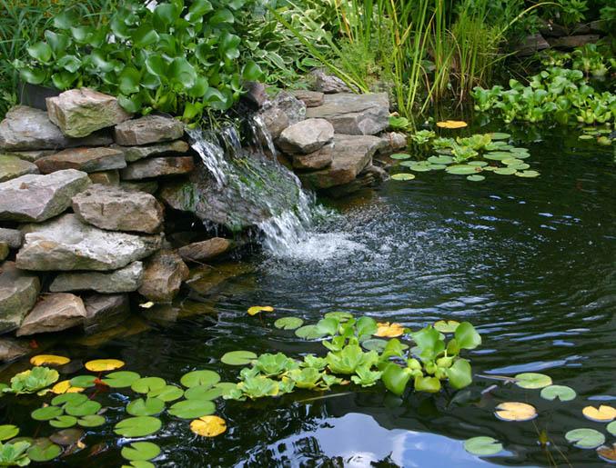 Giardini acquatici elementi d 39 aqua per giardini for Immagini di laghetti artificiali