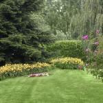 Colori e Profumi in perfetta armonia per giardini unici - Fratelli Bonoldi Milano