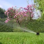 Impianti di Irrigazione e Giardini in perfetta armonia - Fratelli Bonoldi MIlano