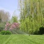 Impianti di irrigazione interrati - Fratelli Bonoldi Giardini
