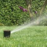 Irrigazione Giardini Milano e Brianza - Fratelli Bonoldi Giardini