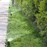 Progettazione e Realizzazione Impianti Irrigazione - fratelli bonoldi giardini