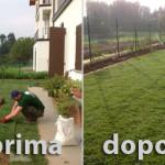 Fratelli Bonoldi Milano Giardini - passione ed esperienza per il vostro giardino