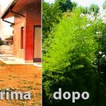 Fratelli Bonoldi Giardini - manodopera specializzata per il vostro giardino