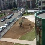 Realizzazione Verde Pubblico - Fratelli Bonoldi Giardini Milano
