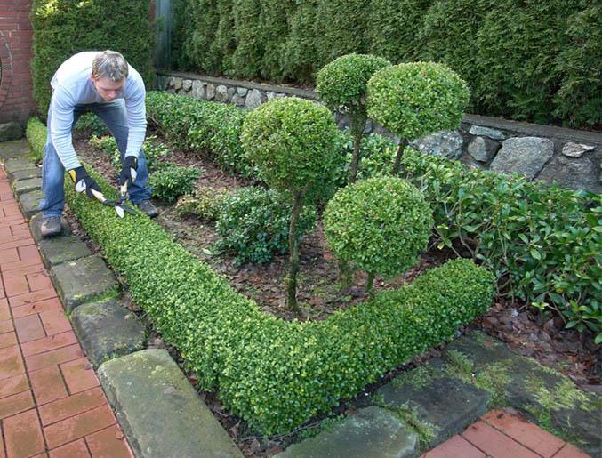 Manutenzione giardini e cura del verde fratelli bonoldi for Manutenzione giardini