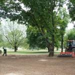 Fratelli Bonoldi Milano - manutenzione verde e giardini