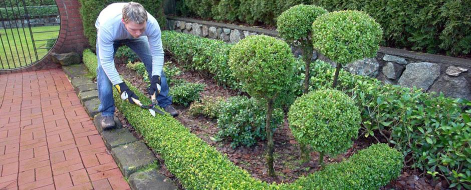 Slider Giardini